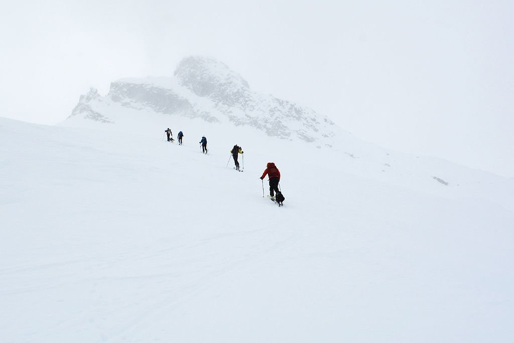 Backcountry Skiiers