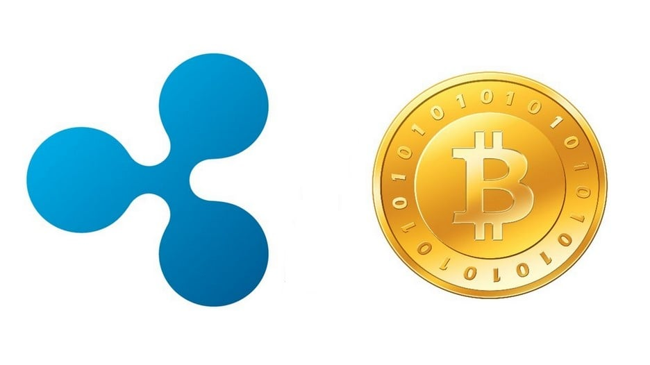 Ripple And Bitcoin Price Crash: Will They Ever Recover?