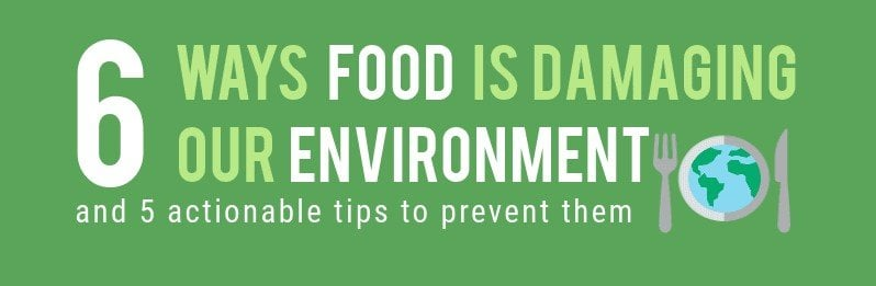 Food Is Damaging The Environment