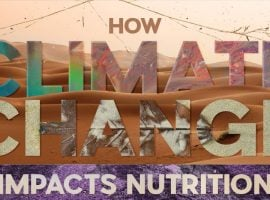 How Climate Change May Affect Nutrition [INFOGRAPHIC]