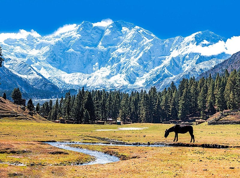 800px-Fairy_Meadows_and_the_view_of_Nanga_Parbat