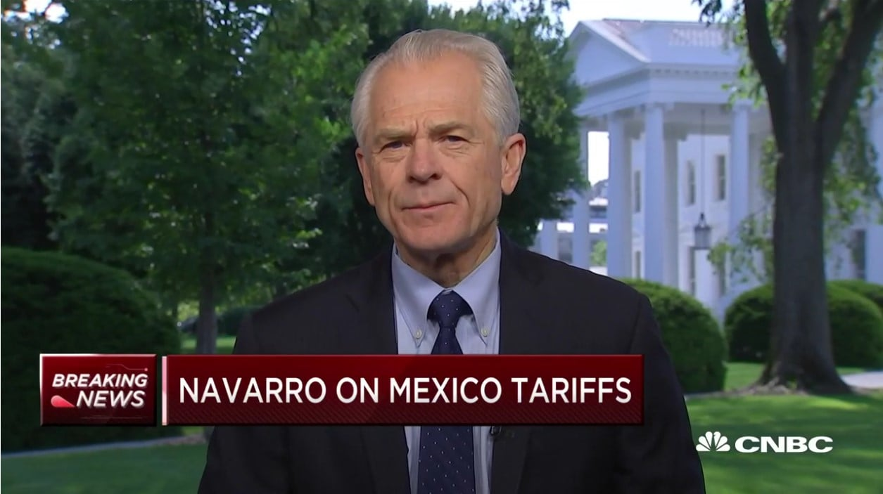 White House Trade Advisor Peter Navarro