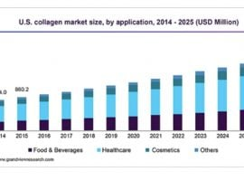 Increased Demand For Marine Collagen – Market Global Forecast (2019-2023) & Trends