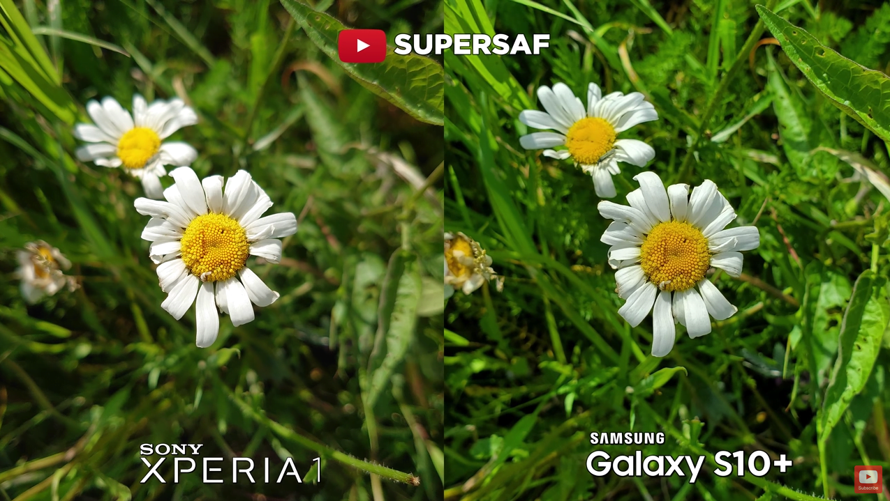 Sony Xperia 1 Vs Galaxy S10 Plus Camera Comparison