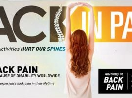The Anatomy And The Hidden Causes Of Back Pain [INFOGRAPHIC]