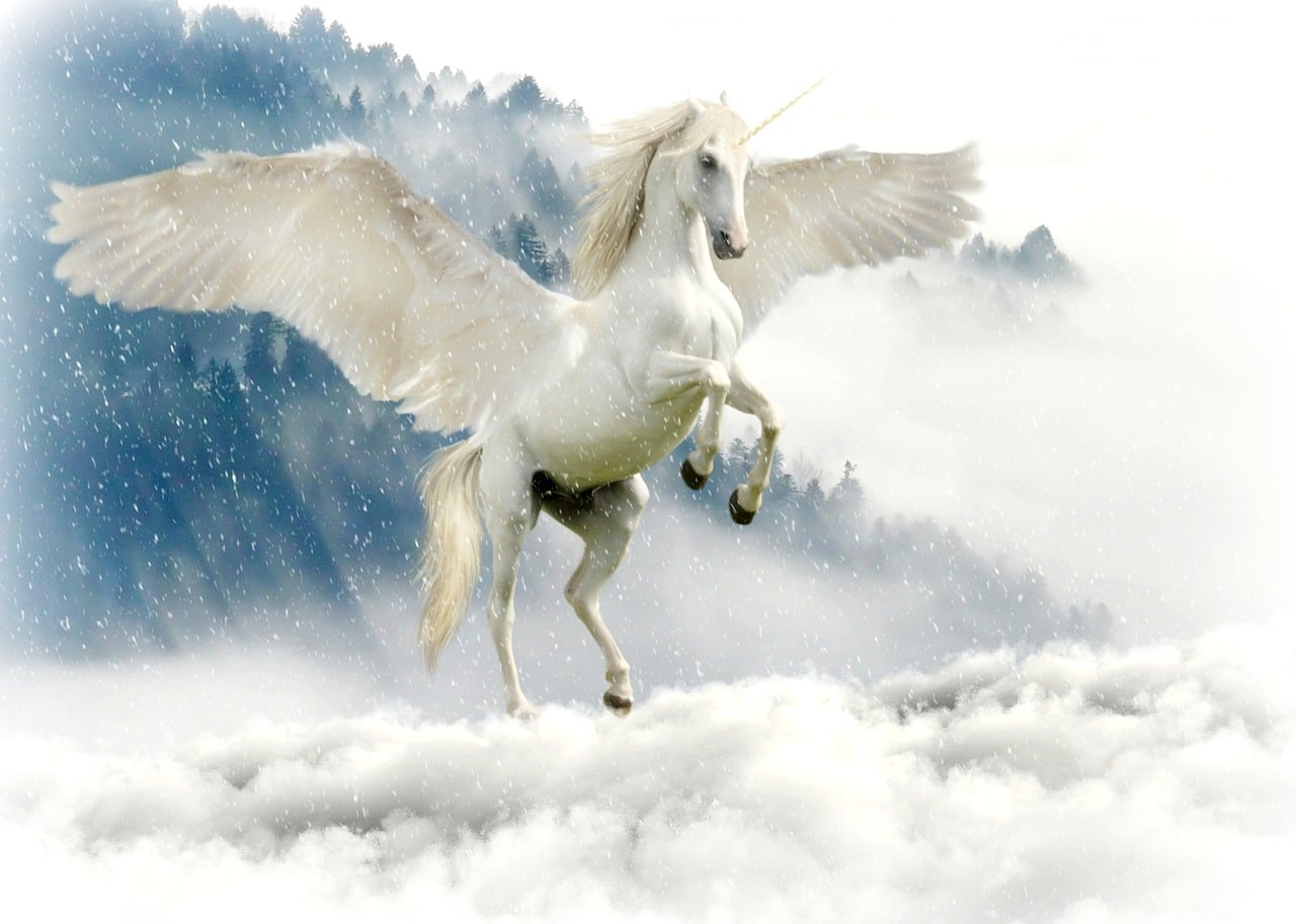 Amazon Unicorn