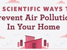 13 Tips On How To Prevent Your House From Daily Pollutants